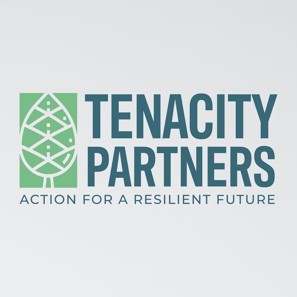 Tenacity Partners Branding